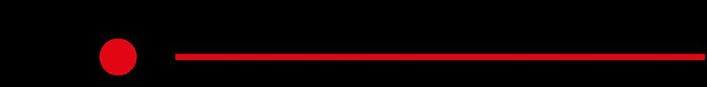 Sport Transfer Logo